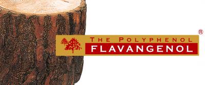 フラバンジェノール の商標画像